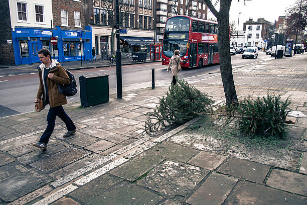 christmas-trees-lie-discarded-on-the-pavement-in-angel-on-january-8-picture-id461659535.jpg