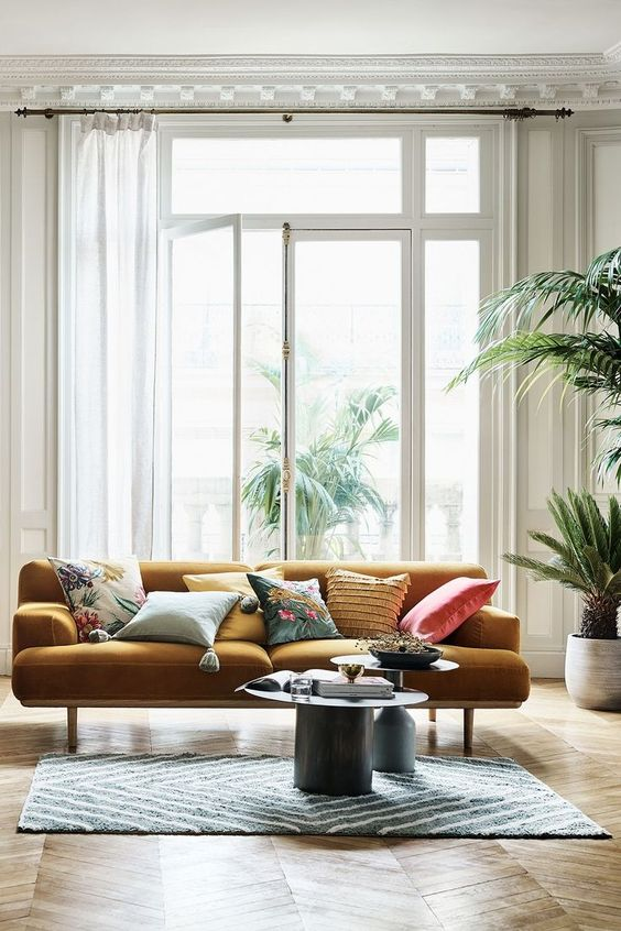 mustard yellow velvet sofa with indoor plants